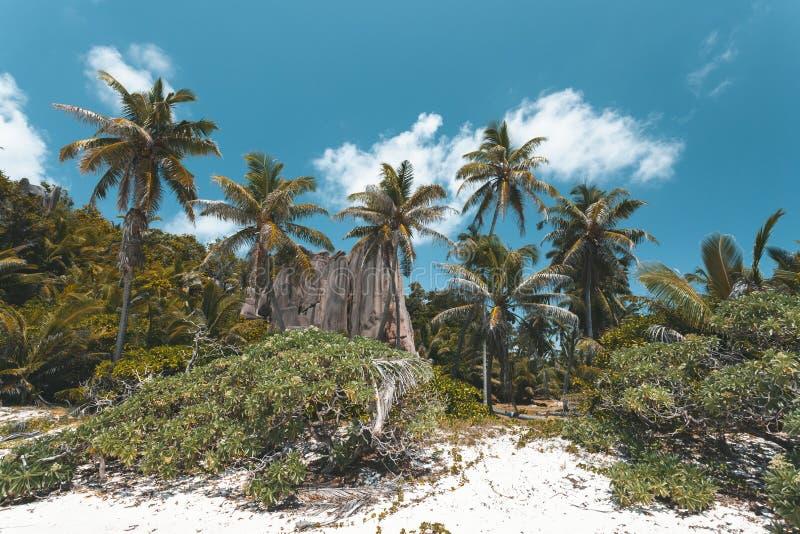 Plage tropicale en Seychelles photographie stock