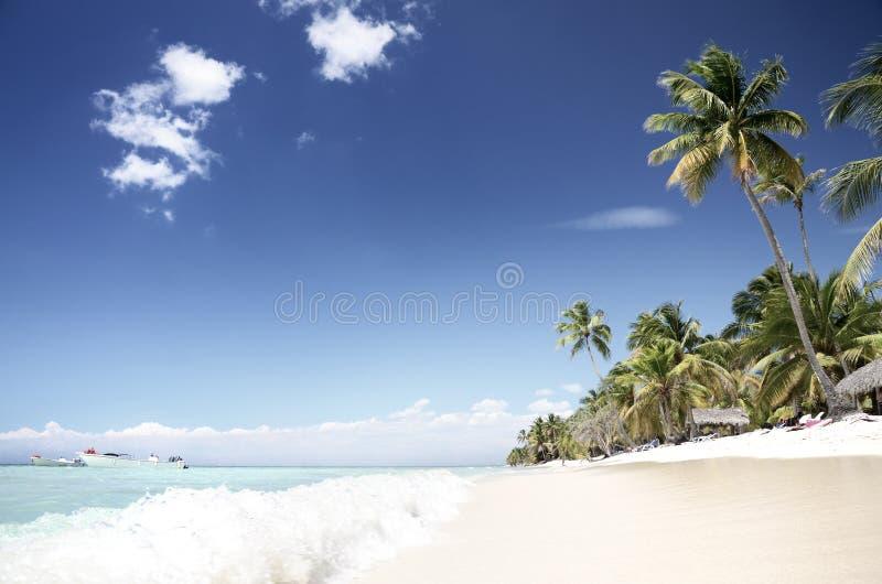 Plage tropicale et vide, île de Saona photos libres de droits