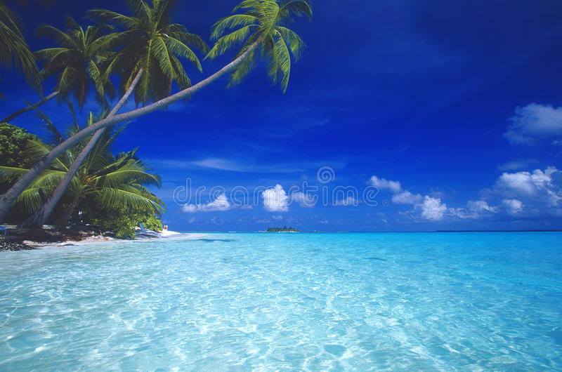plage tropicale Maldives photos stock