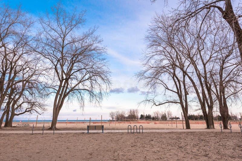 Download Plage vide pendant l'hiver image stock. Image du nature - 87706579