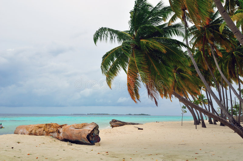 Plage vierge tropicale photo stock
