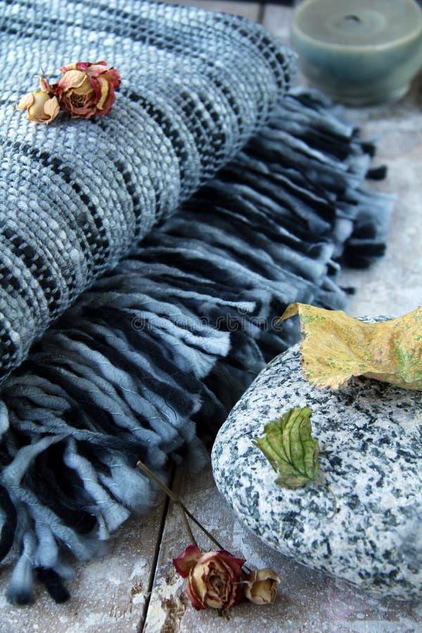 Free Plaid Blanket Stock Photos - 16338073