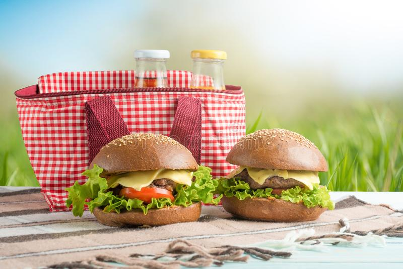 Plaid, sap, hamburger, en een picknickzak, onder de warme zon, in de tot bloei komende de lentetuinen De picknickconcept, zomer e stock foto's