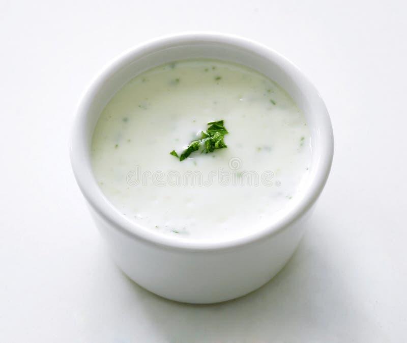 Plain porridge. A bowl of plain porridge with some chopped vegetable dressing royalty free stock photo