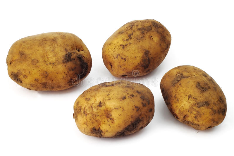 Download Plain potatoes stock photo. Image of macro, objects, nature - 11785890