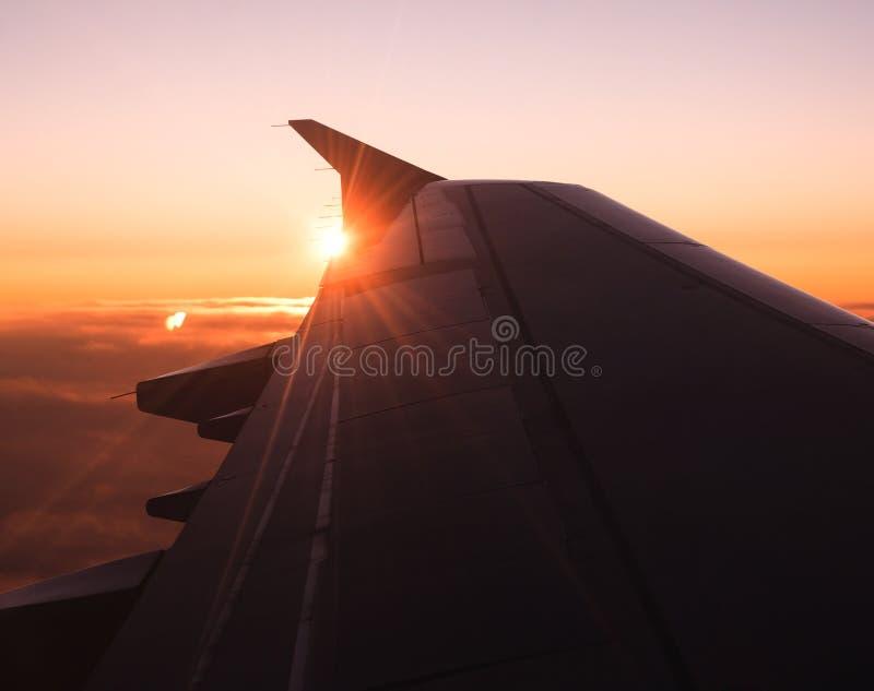Plain Wing Royalty Free Stock Image