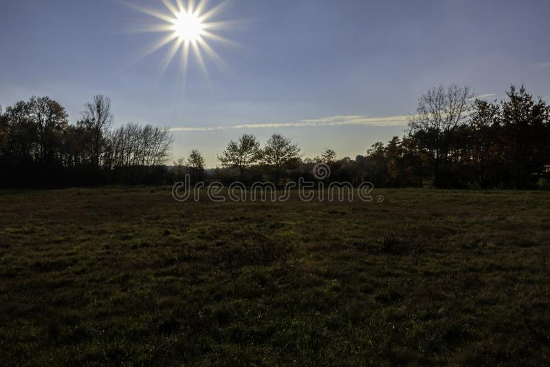 Plaine由与它的树的太阳点燃了在秋天的颜色 库存照片