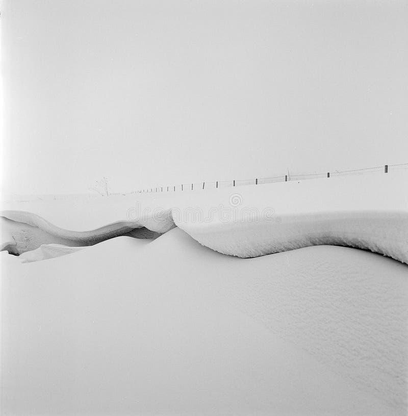 Plaine de l'hiver image libre de droits