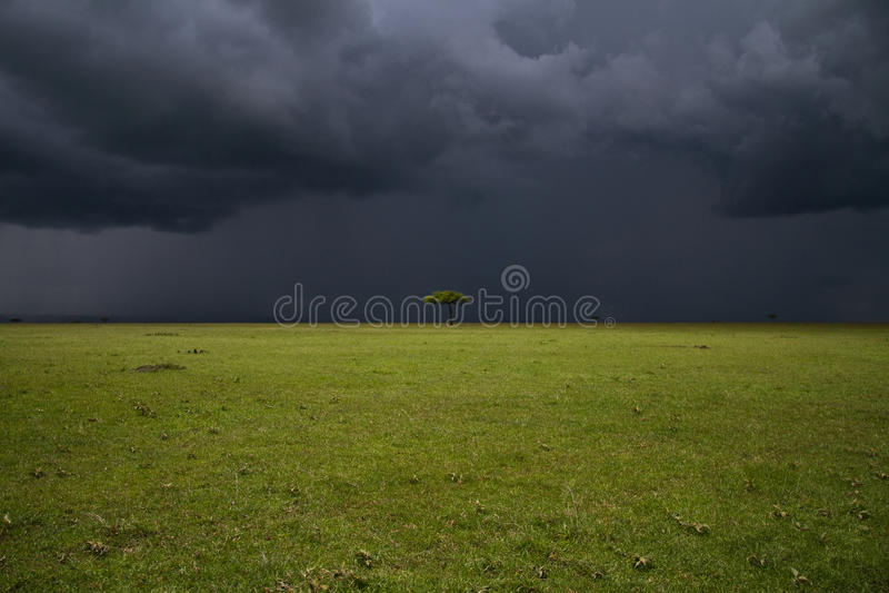 Plaine de Mara de masai photos stock