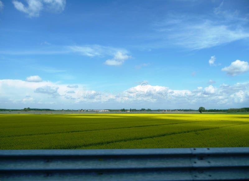 Plaine jaune photo libre de droits