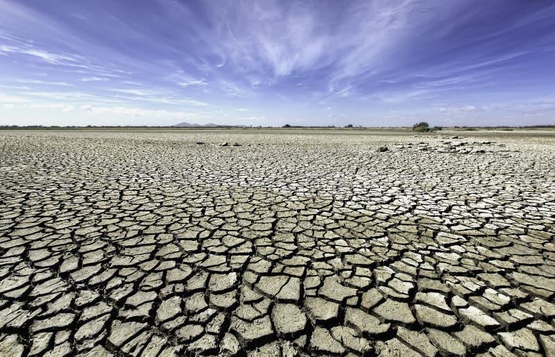 Plaines sèches et criquées d'Australie d'intérieur image libre de droits
