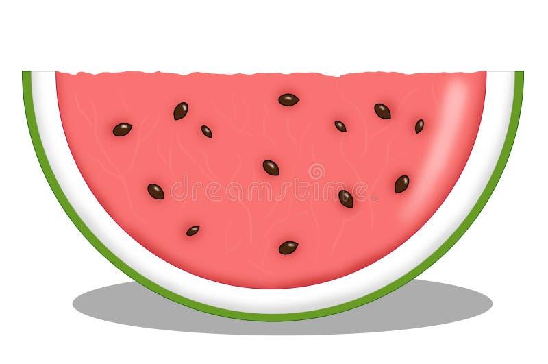 Plak van meloen royalty-vrije illustratie