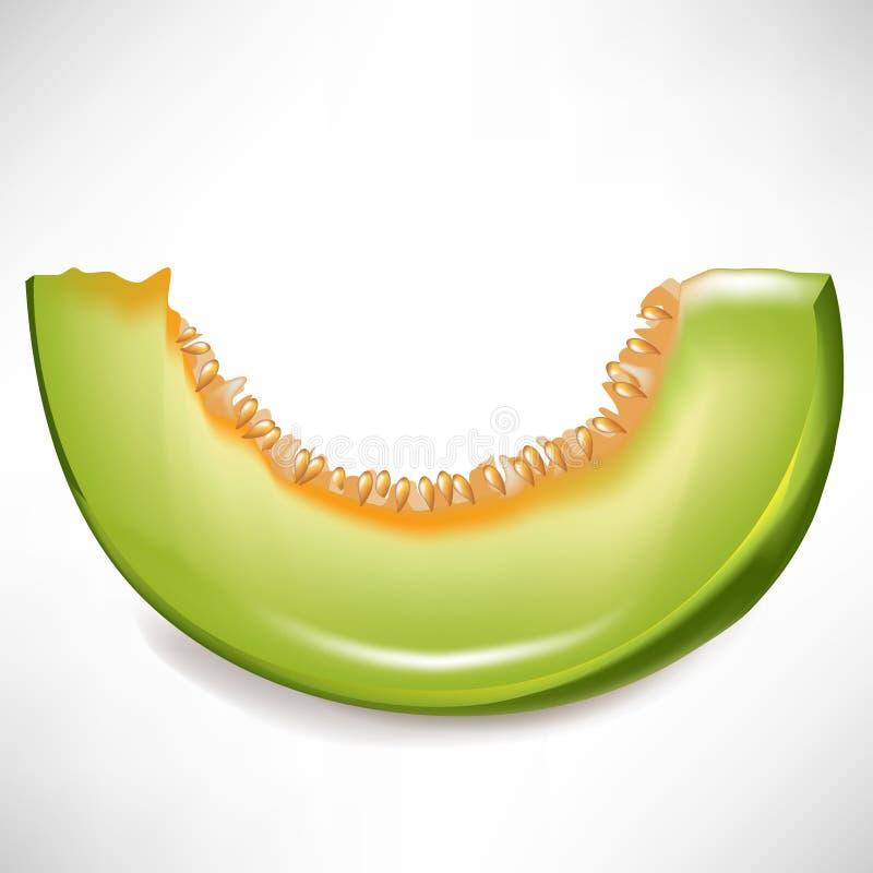 Plak van meloen stock illustratie