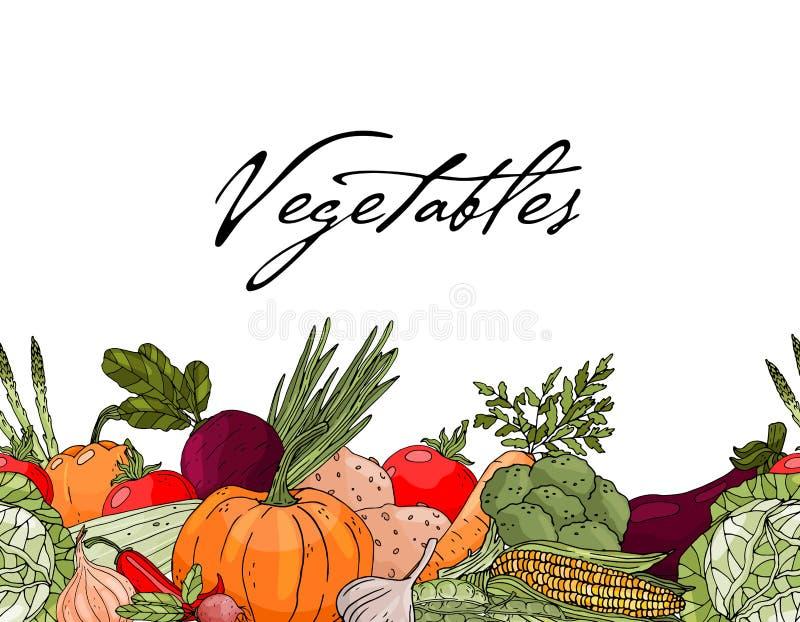 Plakat mit nahtlose Verzierungshandgezogenem Gemüse auf einem weißen Hintergrund vektor abbildung