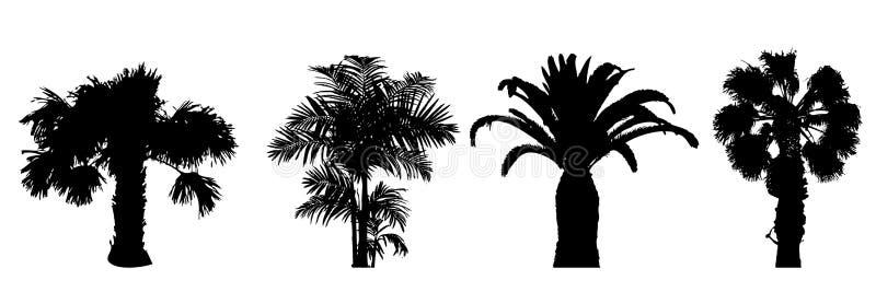 plam结构树 库存例证