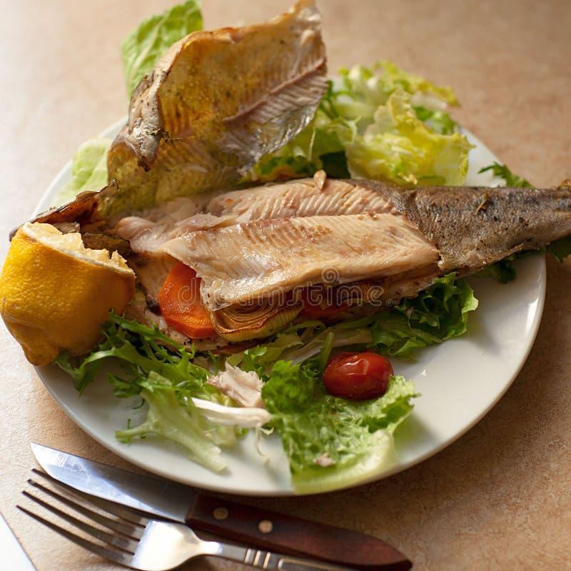 Plan bästa sikt av bakad fiskdisk som tjänas som med grön sallad på vita plattor royaltyfri foto