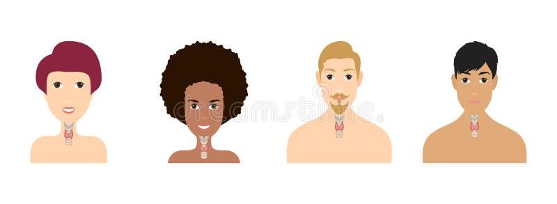 Plan de glande thyroïde et de trachée montré sur une silhouette d'hommes et femmes Ic?ne d'anatomie d'organes de corps humain m?d illustration libre de droits