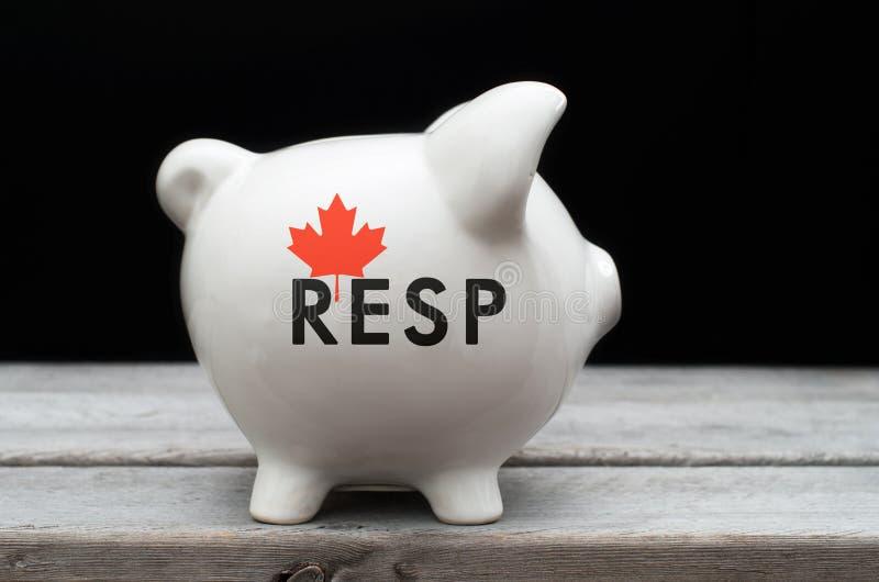 Plan de l'épargne d'éducation enregistré par Canadien image libre de droits
