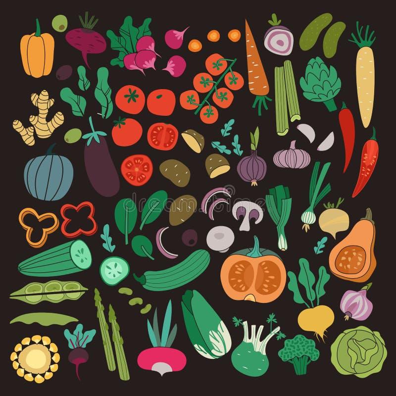 Plan gr?nsakupps?ttning Aubergine för potatis för tomat för gurka för färgmorotlök Grönsak för organisk mat för mål för strikt ve royaltyfri illustrationer