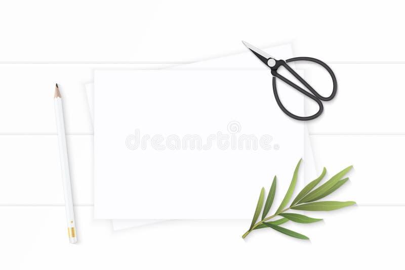 Plan lekmanna- för sammansättningspapper för bästa sikt elegant vit sax för blad för dragon för blyertspenna och tappningmetallpå arkivfoto