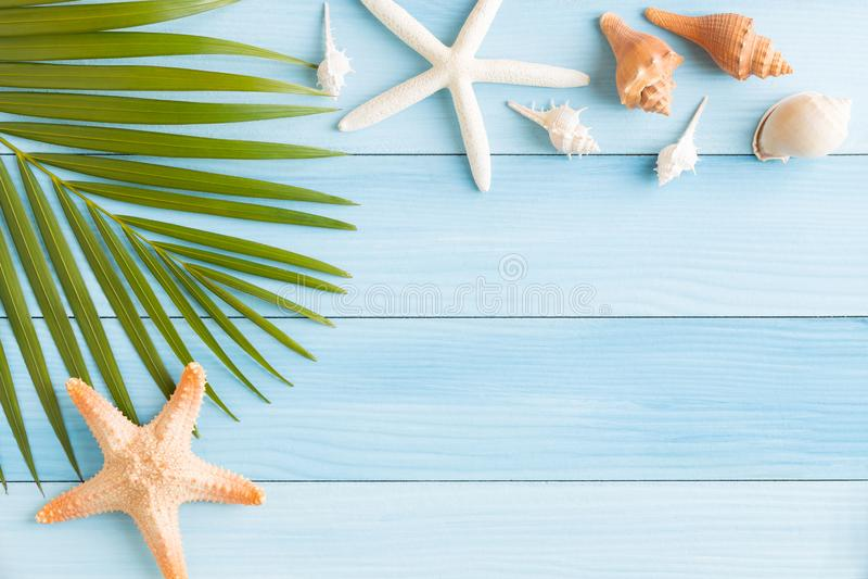 Plan lekmanna- fotosaeshell och sjöstjärna på den blåa trätabellen, bästa sikt och kopieringsutrymme för montage din produkt, som fotografering för bildbyråer