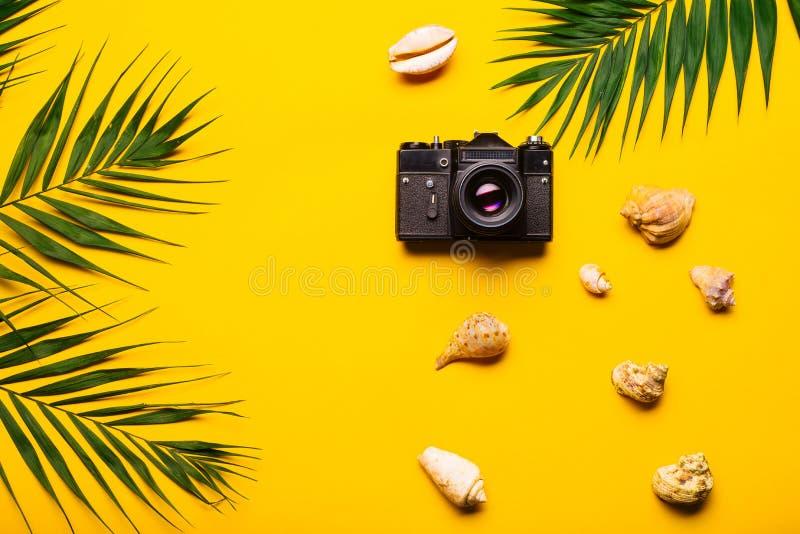 Plan lekmanna- handelsresandetillbehör med palmbladet, snäckskal, kamera Lopp för bästa sikt eller semesterbegrepp royaltyfri bild