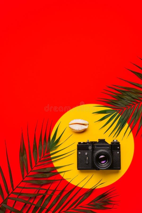 Plan lekmanna- handelsresandetillbehör med palmbladet, snäckskal, kamera Lopp för bästa sikt eller semesterbegrepp arkivbilder