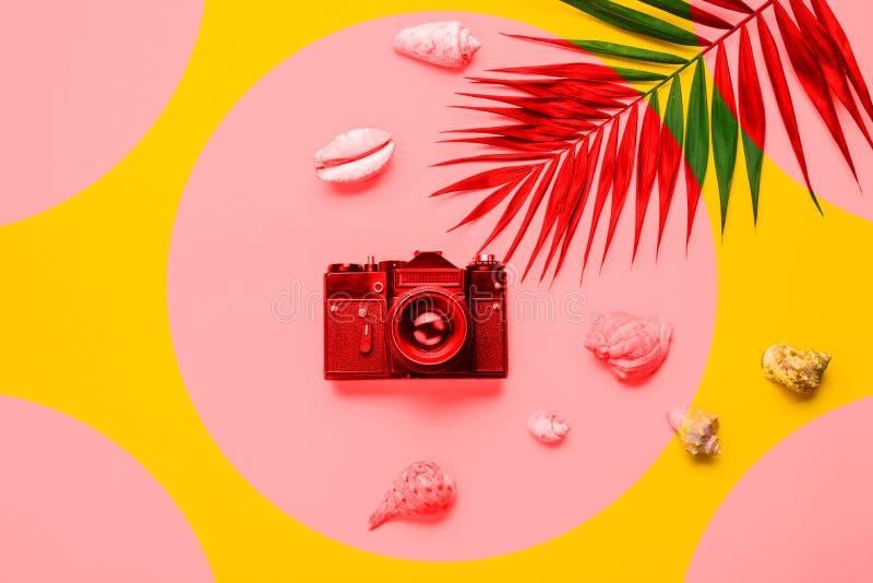 Plan lekmanna- handelsresandetillbehör med palmbladet, snäckskal, kamera Lopp för bästa sikt eller semesterbegrepp royaltyfri foto