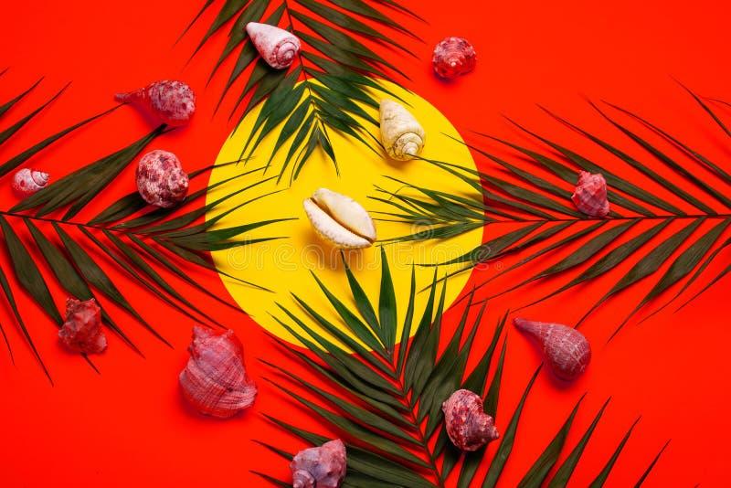Plan lekmanna- handelsresandetillbehör med palmbladet, snäckskal Lopp för bästa sikt eller semesterbegrepp arkivbilder