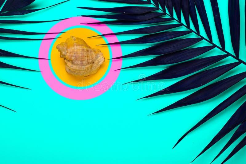 Plan lekmanna- handelsresandetillbehör med palmbladet, snäckskal Lopp för bästa sikt eller semesterbegrepp royaltyfria bilder