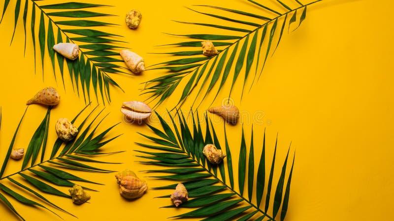 Plan lekmanna- handelsresandetillbehör med palmbladet, snäckskal Lopp för bästa sikt eller semesterbegrepp royaltyfri bild