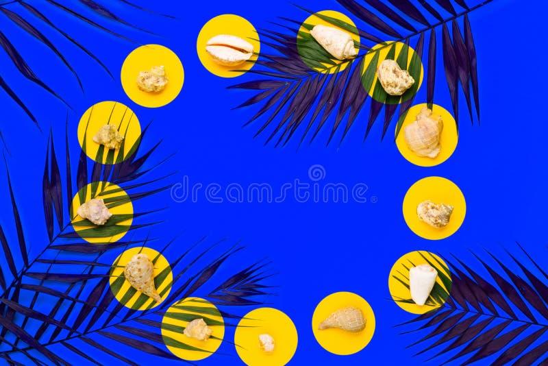 Plan lekmanna- handelsresandetillbehör med palmbladet, snäckskal Lopp för bästa sikt eller semesterbegrepp fotografering för bildbyråer