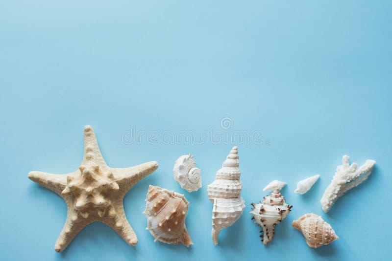 Plan lekmanna- handelsresandetillbeh?r p? bl? bakgrund, kopieringsutrymme med havsskal, pengar och solglas?gon Bl?tthav, Sky & mo royaltyfria bilder