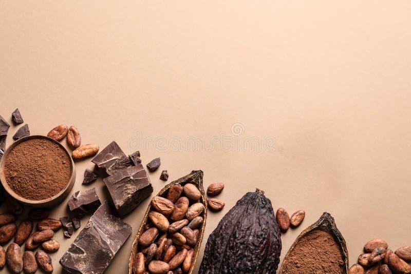 Plan lekmanna- sammansättning med kakaofröskidor och choklad på beige bakgrund arkivbilder