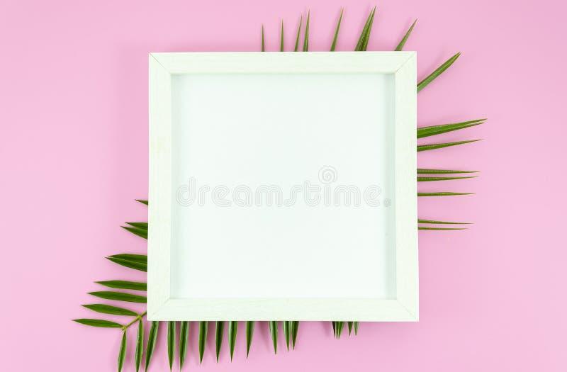 Plan lekmanna- vit ram med kopieringsutrymme på den tomma pappers- listan på rosa bakgrund med tropiska blad från palmträdet Top  royaltyfri bild