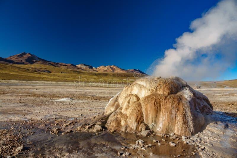 Plan rapproché actif de geyser en EL Tatio, Atacama, Chili photos stock