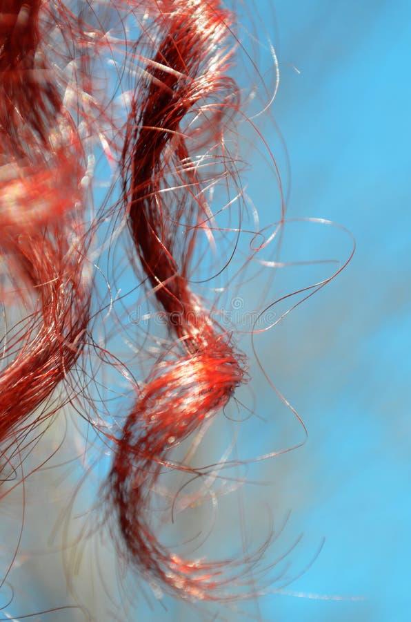 Plan rapproché bouclé rouge de boucles photo libre de droits