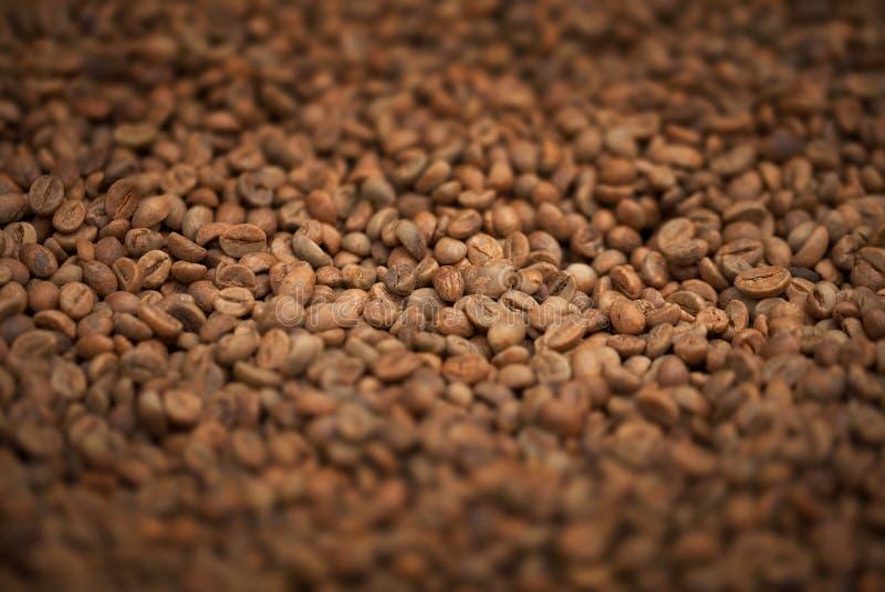 Grains de café frits frais en gros plan photographie stock libre de droits