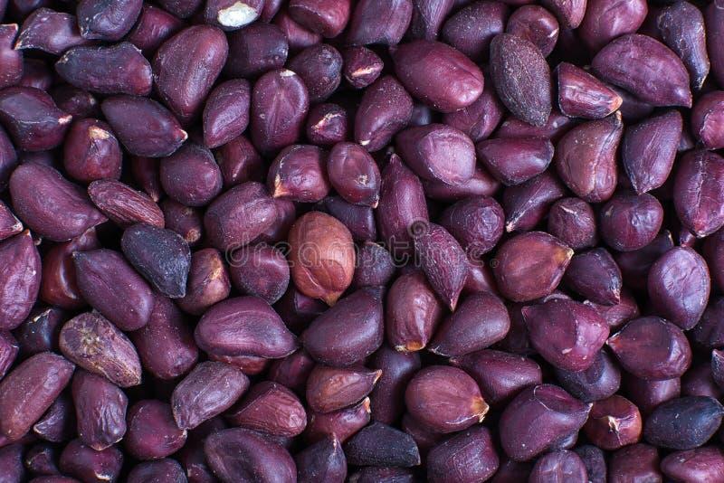 Plan rapproché chevronné d'arachides images stock