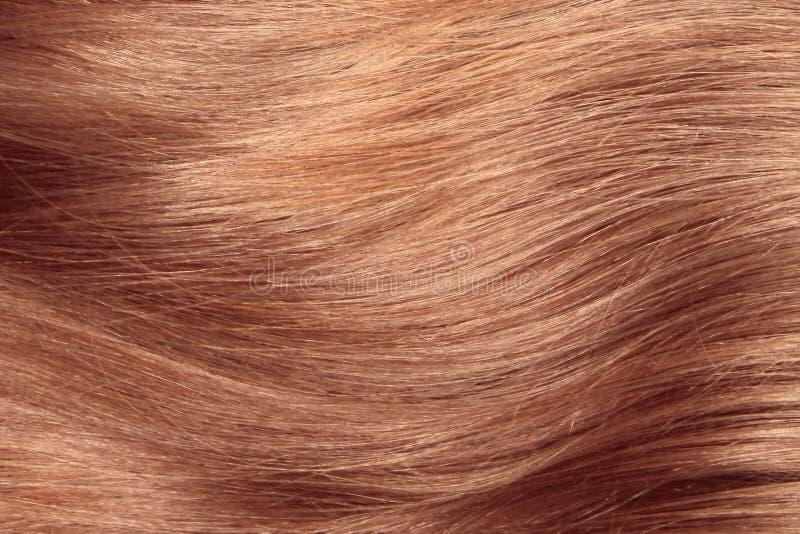 plan rapproché Cuivre-rouge de cheveux photographie stock