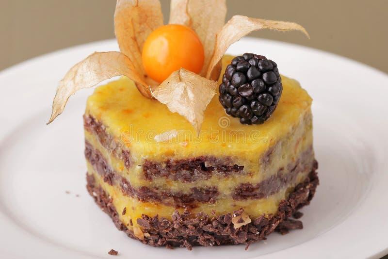 Plan rapproché délicieux de dessert de gâteau au fromage image libre de droits