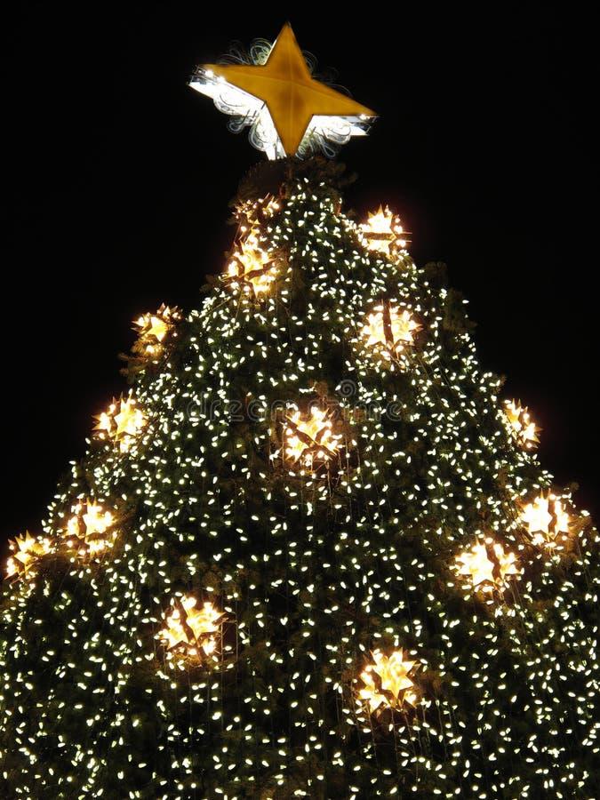 Plan rapproché d'arbre de Noël images libres de droits