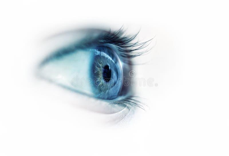 Plan rapproché d'oeil bleu photos libres de droits