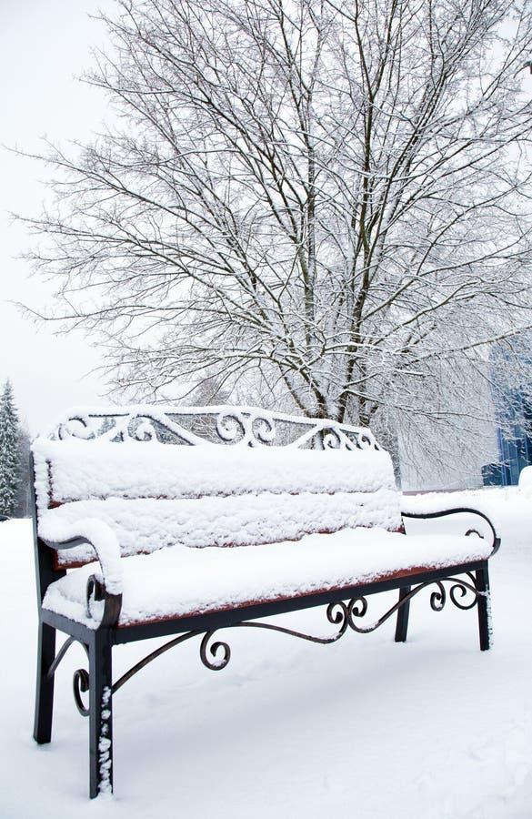 Plan rapproché d'un banc couvert de neige photos libres de droits
