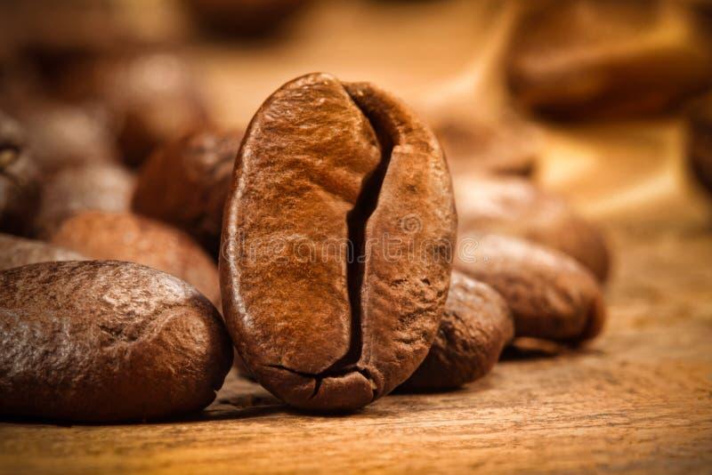 Plan rapproché d'un grain de café sur le bois photos libres de droits