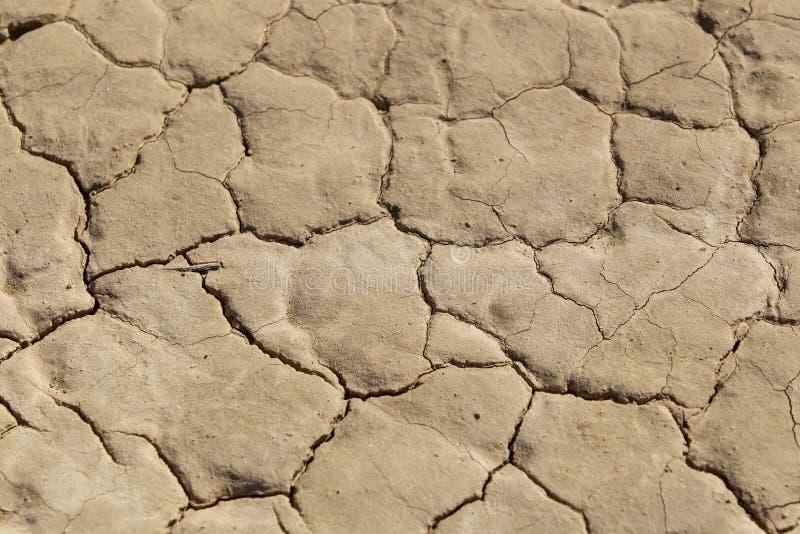 Plan rapproché d'un plancher aride sec de désert photo libre de droits