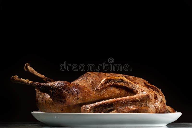Plan rapproché d'une oie rôtie d'un plat blanc photographie stock libre de droits