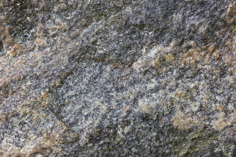 Plan rapproché d'une roche photo libre de droits