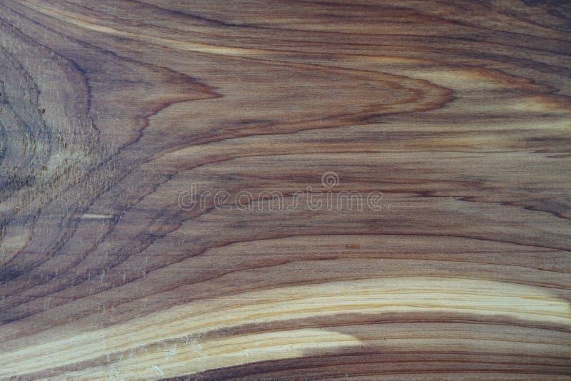 Plan rapproché d'une texture de noeud d'apparence de planche de cèdre et d'un modèle naturel de fibre de bois en tant que fond en image libre de droits