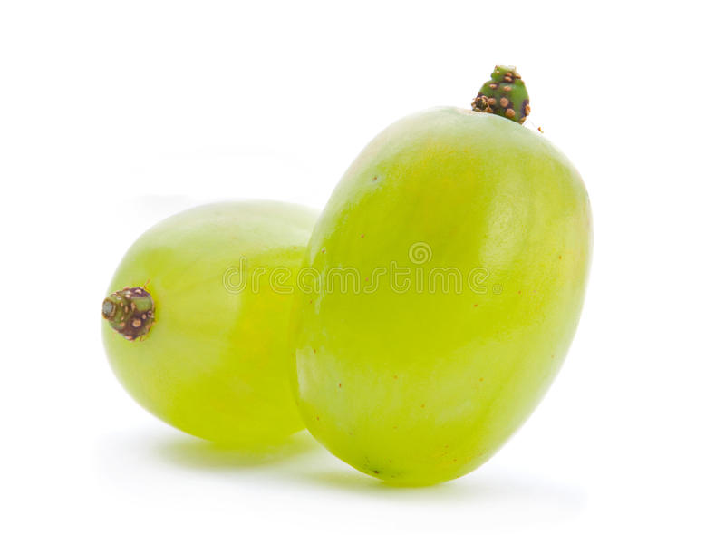 Baie verte de raisin image stock